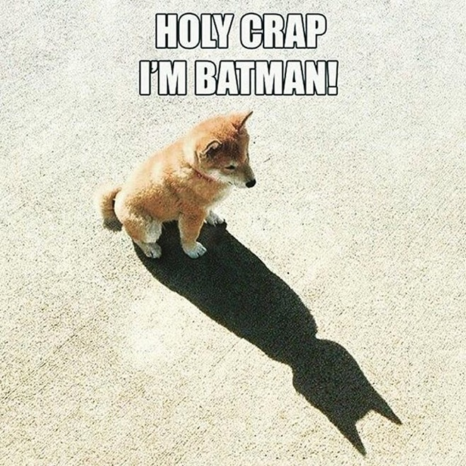 Batman is for real